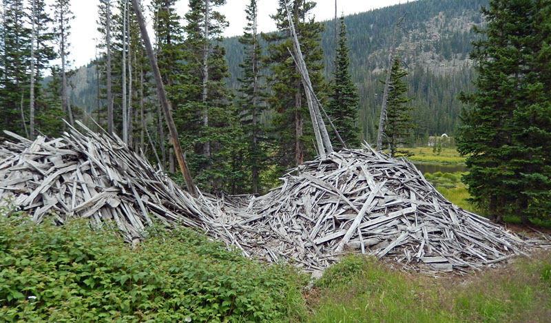 Debris at the site of an old logging mill at Cirque Meadows