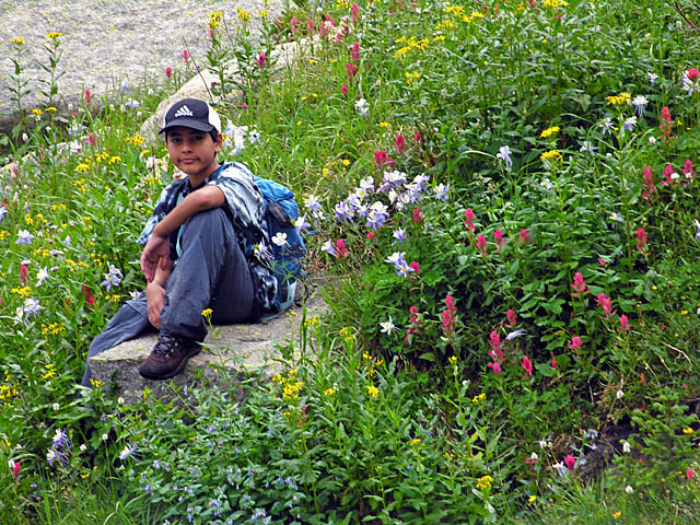 Christopher sitting on rock in wildflowers - Indian Peaks Wilderness Area, Colorado